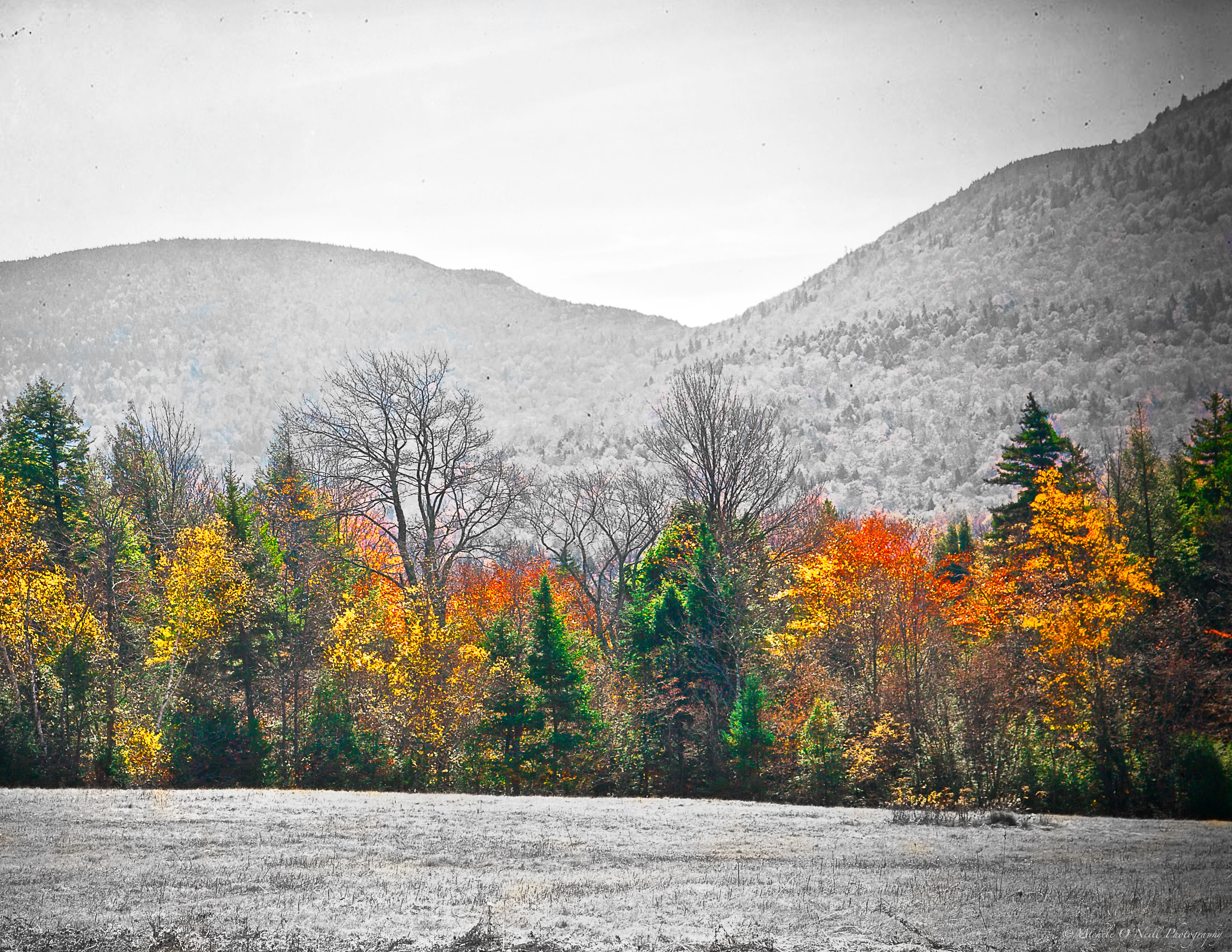 Catskill Mountains, NY Catskill mountains, Mountains, Nature