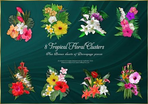 8 Tropical Floral Clusters + 2 Bonus sheets Decoupage