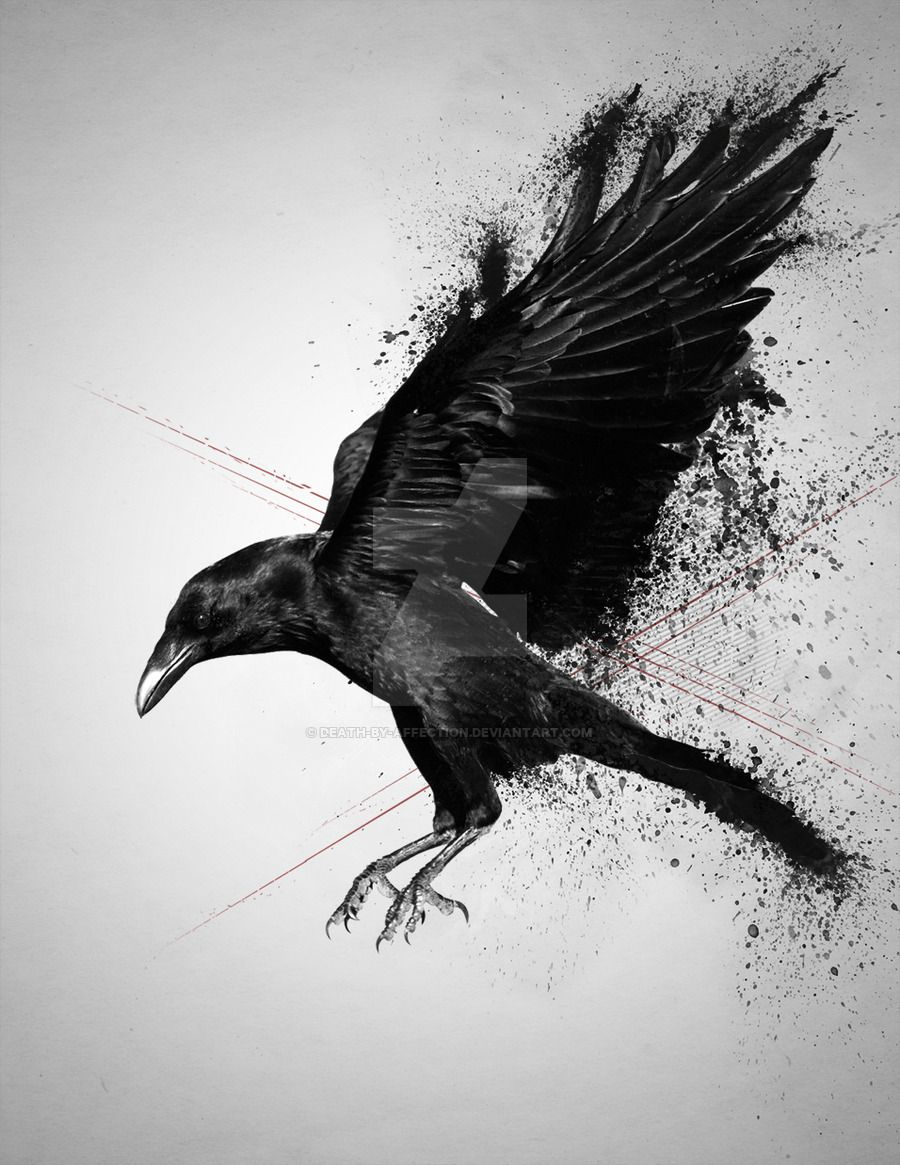 Pin By Raven G On Tattoos Pinterest Crows Ravens Ravens And Crows