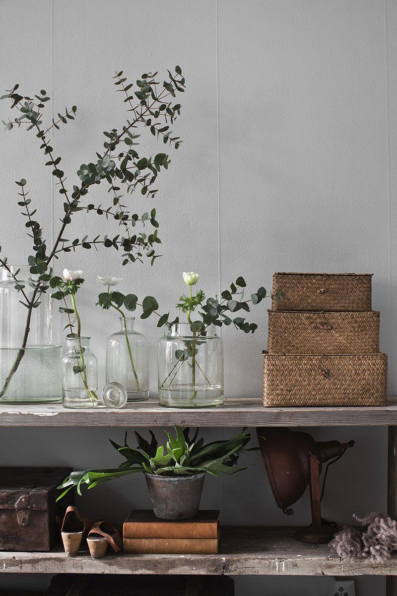 strenghielm kastellgatan 3 sisustus pinterest pflanzen dekoration und einrichtung. Black Bedroom Furniture Sets. Home Design Ideas