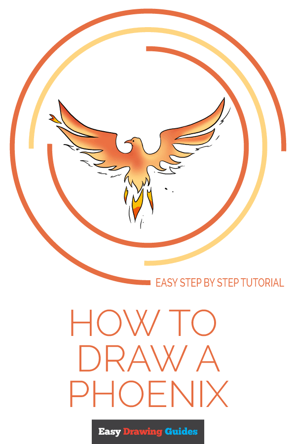How to Draw a Phoenix | Drawing tips | Easy drawings, Drawing