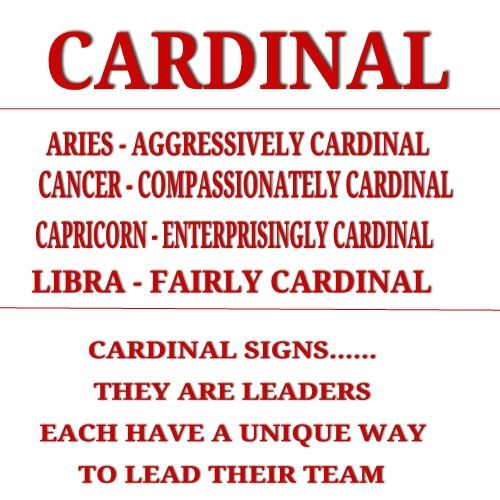 Spiritually guiding others in 2015 is the job of Cardinal