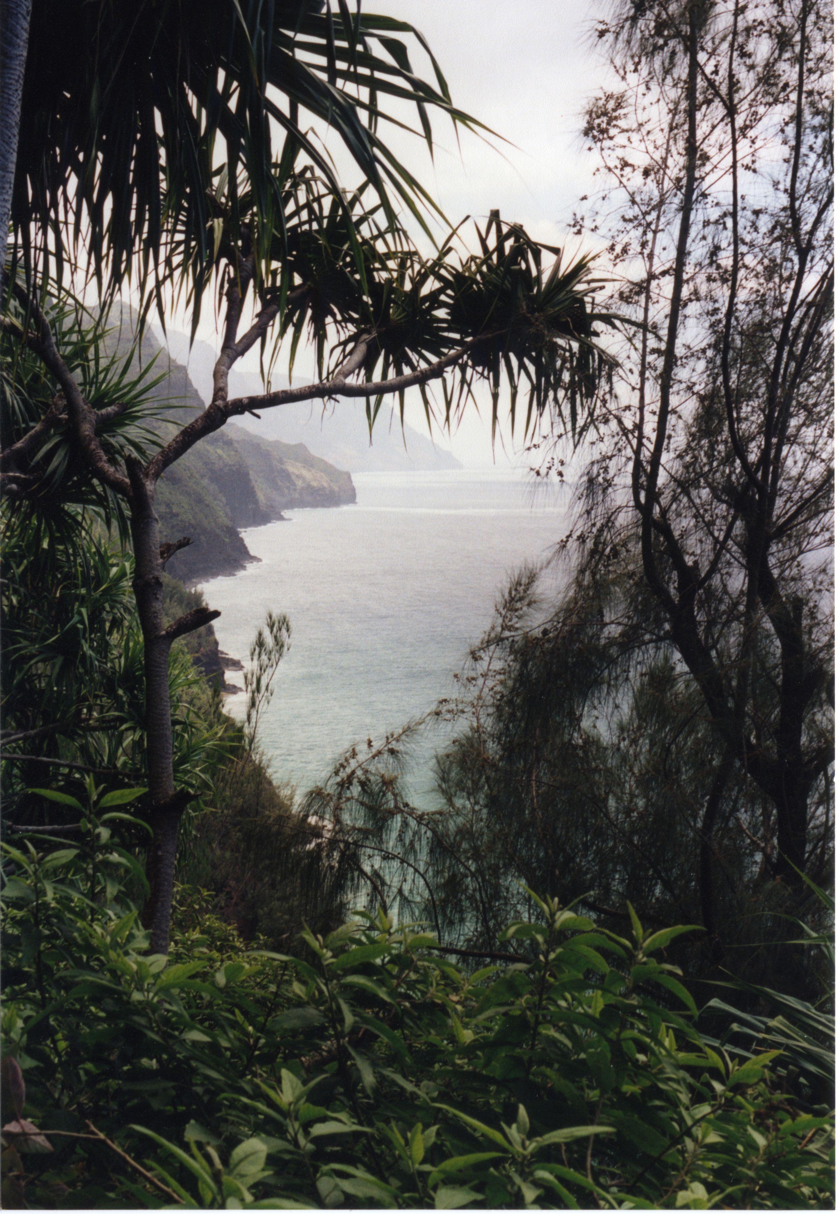 This was taken while hiking the Kalalau Trail in Kauai.