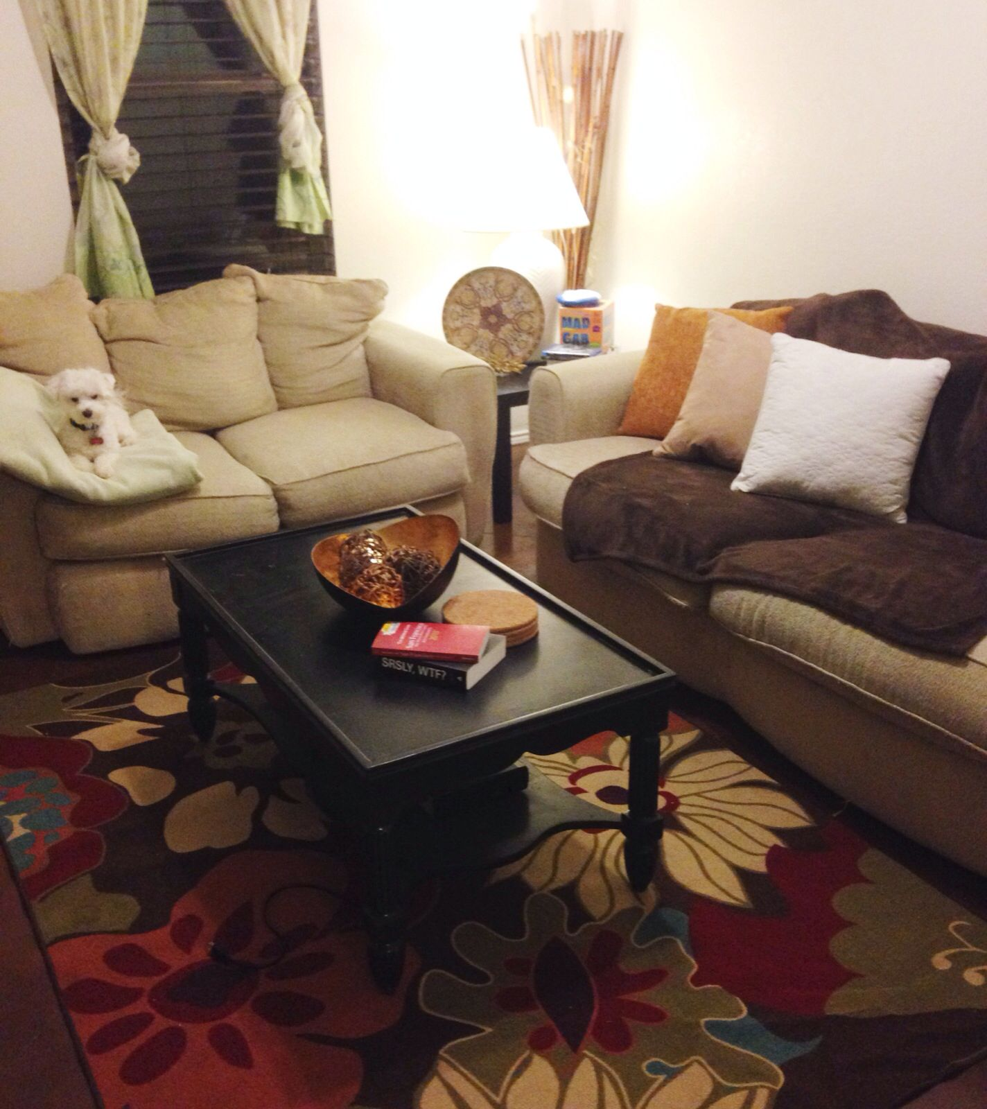 College apartment living room ideas for cheap I bought mostly
