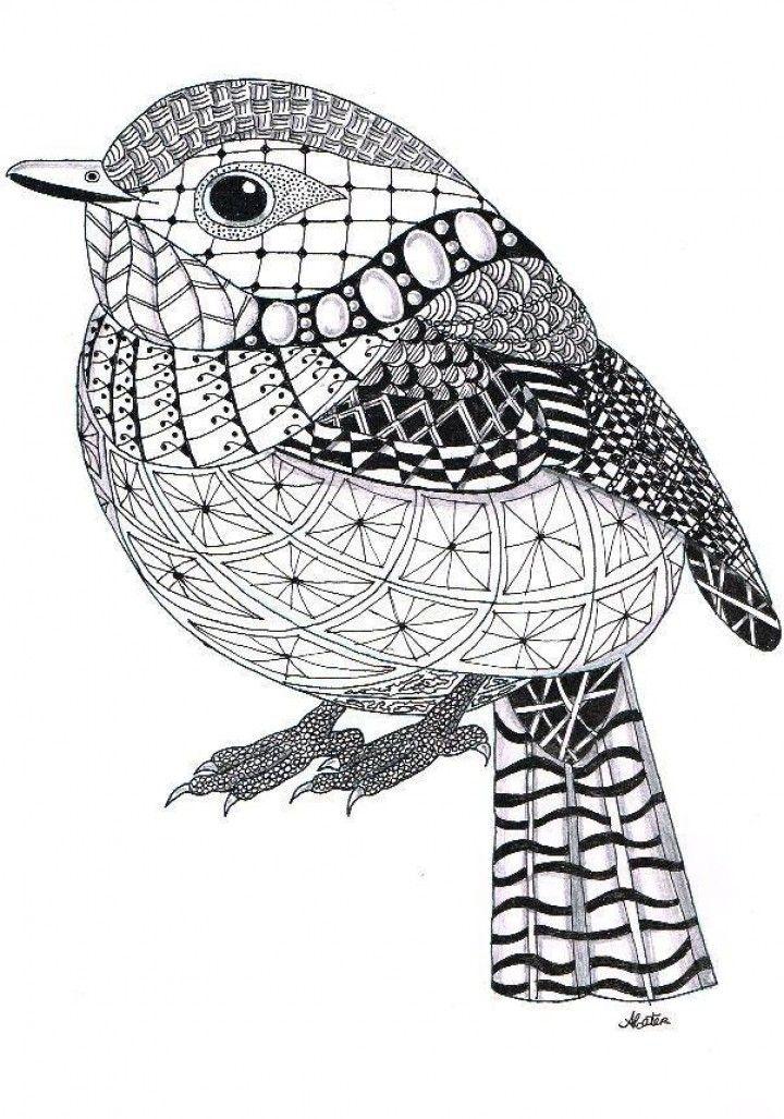 Zentangle - Bird | Kids | Pinterest | Mandalas, Zentangle y Dibujo