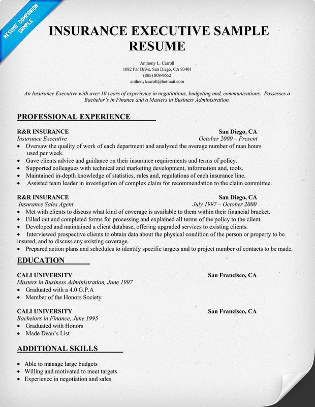 Insurance Executive Resume Sample (resumecompanion) Resume