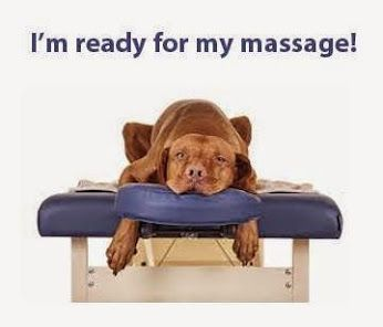 Free Picture Of Dog Getting Massage