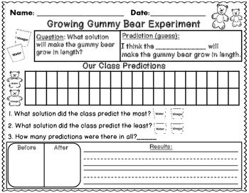 Freebie This Sheet Will Go Perfect With Your Gummy Bear Experiment We Did This Cool Science Fair Projects Science Fair Projects Gummy Bear Science Project Gummy bear experiment worksheet