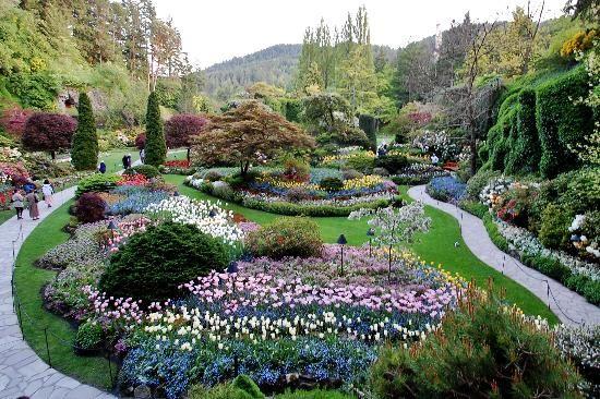 8f6fc34ba3ade526417e842e62f846a4 - Vancouver To Victoria Butchart Gardens Tour