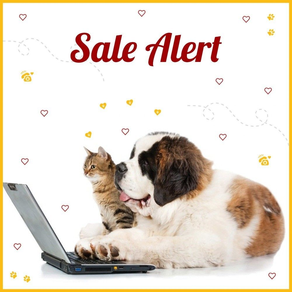 Theres no better way to express your love for your pet than showering it with gifts! Stay tuned to know more about our upcoming sale. #SaleAlert #Sale #SaleAway #PetSale #Pawfriends #PamperedPooch #DogsOfInstagram #Cat #Dog #CatsOfInstagram #PetAccessories #PetNeeds #GroomingProducts #BestWoof #PetLove #ShopOnline #OnlineStore #ILoveMyPet #PamperedPets #PlayfulPets #PetCare #TheCanineWay #CatCare #PetBowls #FurFriends #PetLife #PetSmart #EveryPetIsUnique #PetProjectIndia  Theres no better way to express your love for your pet than showering it with gifts! Stay tuned to know more about our upcoming sale. #SaleAlert #Sale #SaleAway #PetSale #Pawfriends #PamperedPooch #DogsOfInstagram #Cat #Dog #CatsOfInstagram #PetAccessories #PetNeeds #GroomingProducts #BestWoof #PetLove #ShopOnline #OnlineStore #ILoveMyPet #PamperedPets #PlayfulPets #PetCare #TheCanineWay #CatCare #PetBowls #FurFriends #PetLife #PetSmart #EveryPetIsUnique #PetProjectIndia