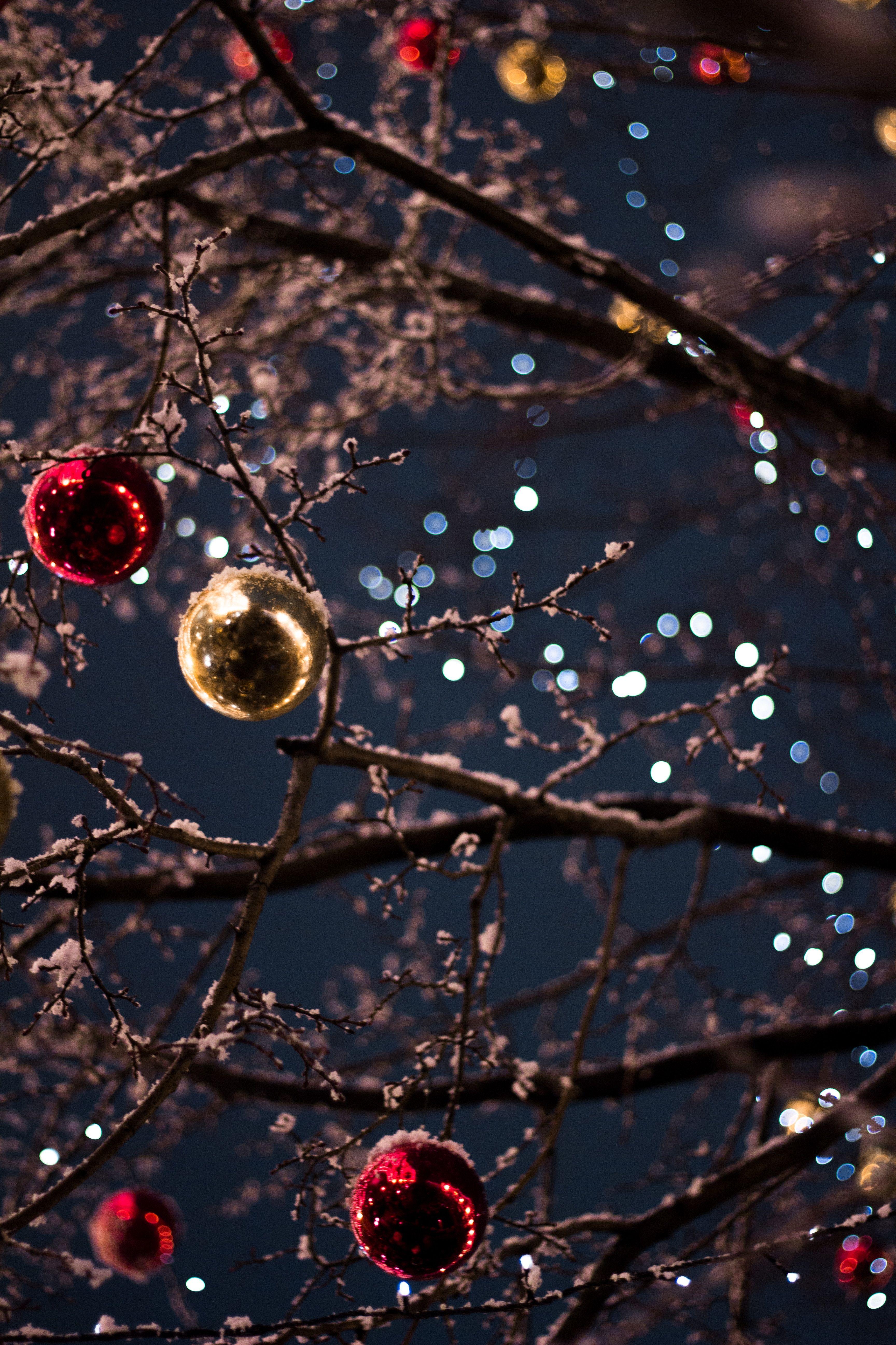 Happy New Year Backdrop Chiristmas Backdrop Christmas Tree Backdrop Santa Cluas Backdr Wallpaper Iphone Christmas Christmas Phone Wallpaper Christmas Wallpaper