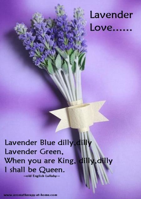 Ghdpastels Lavender Quote Lavender Quotes Lavender Lavender Farm