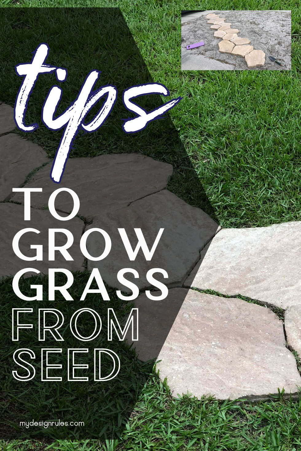Pin On Landscaping Ideas Lawn Decor Group Board