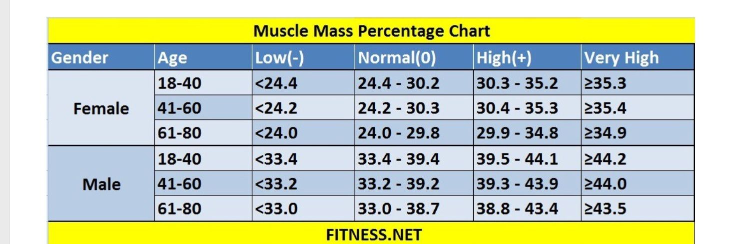 Pin By Bonnie Levy On Exercise And Tennis Tennis Tips Muscle Mass Muscle