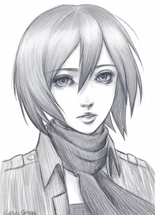 Mikasa Kakashi Desenho