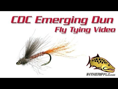 CDC Emerging Dun Fly Tying Video Instructions