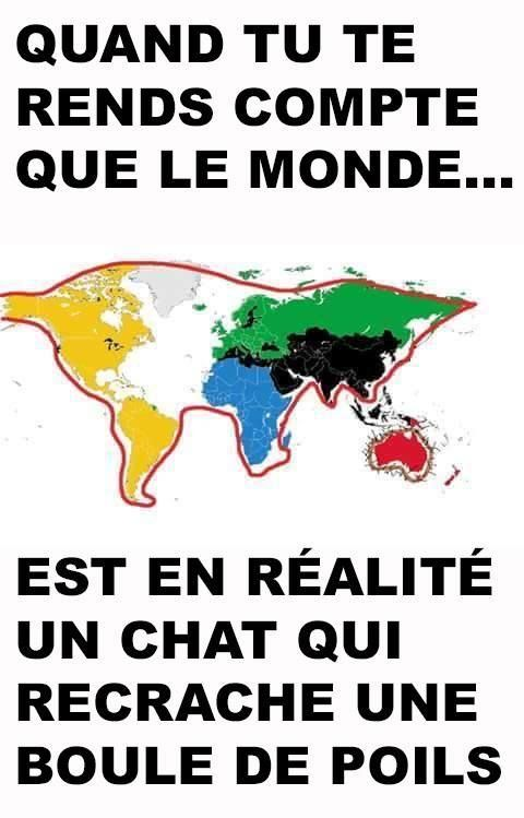carte du monde chat Carte du monde en forme de chat   Image drôle   Société | Humour