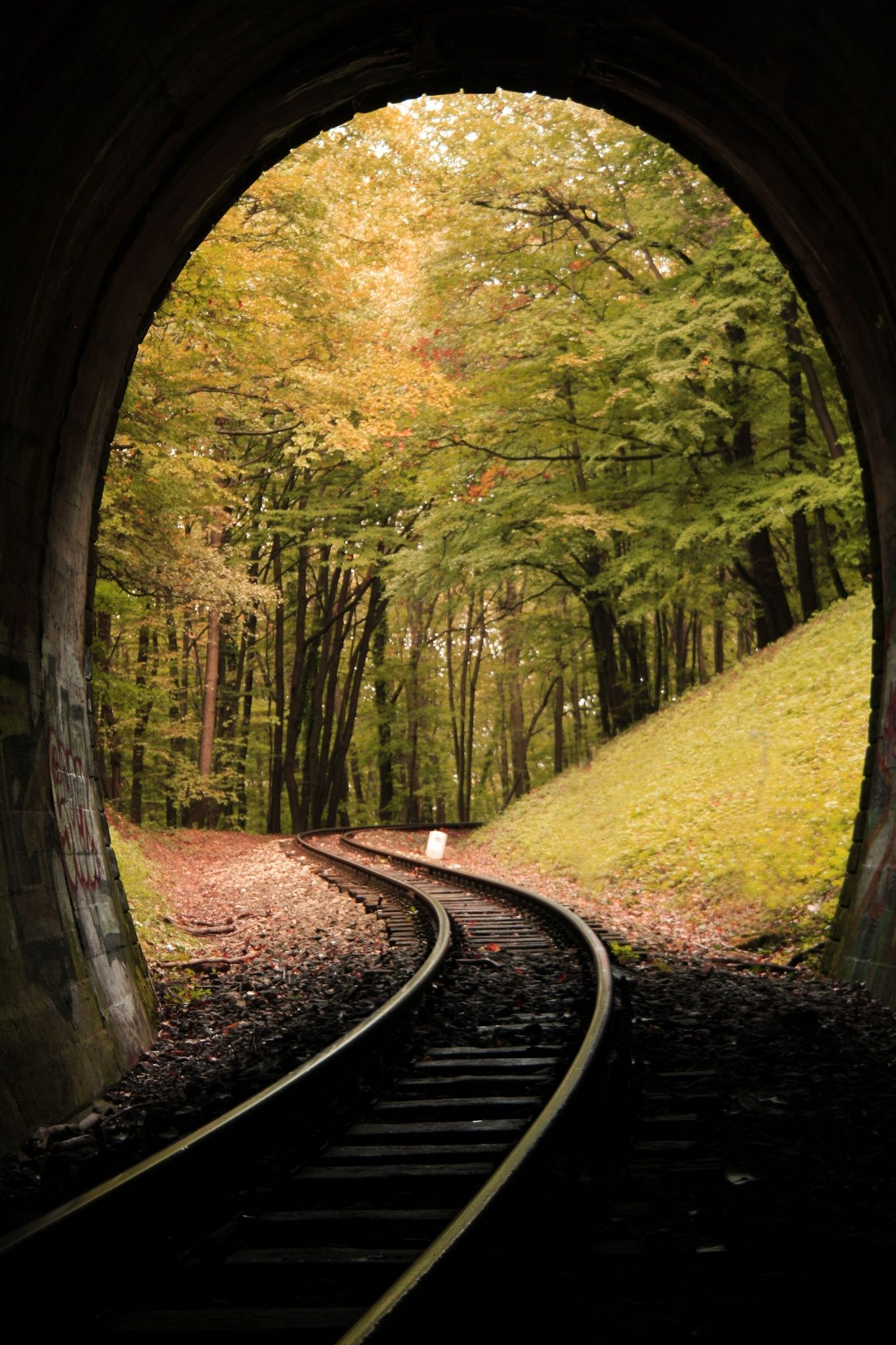 Tunnel Autumn By Zoltan Tujner 500px Train Tunnel Train Tracks Scenery Pictures Nature railway rails stone arch trees