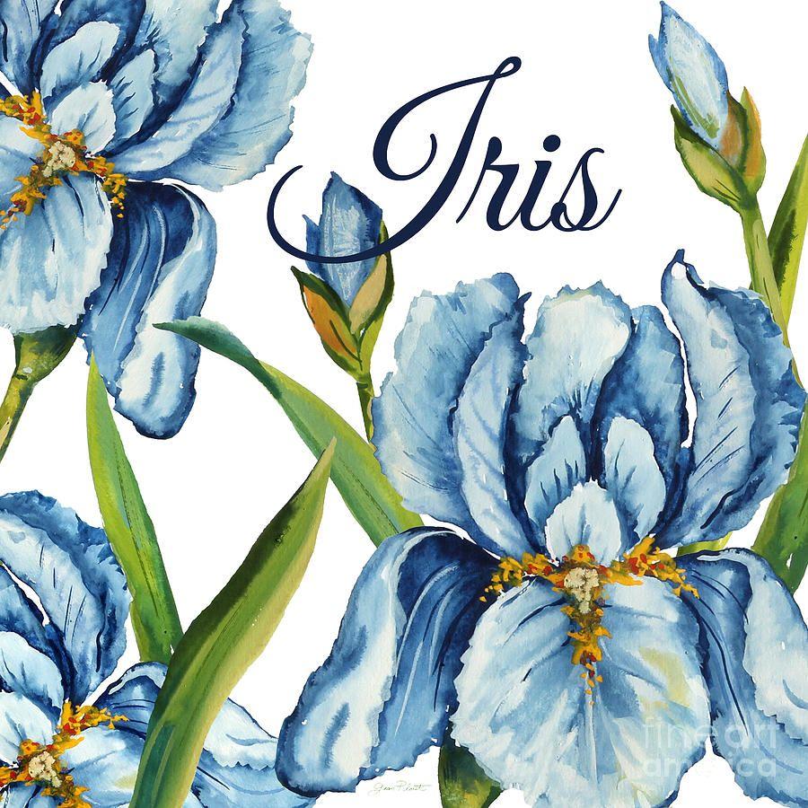 Iris-jp2586 Painting