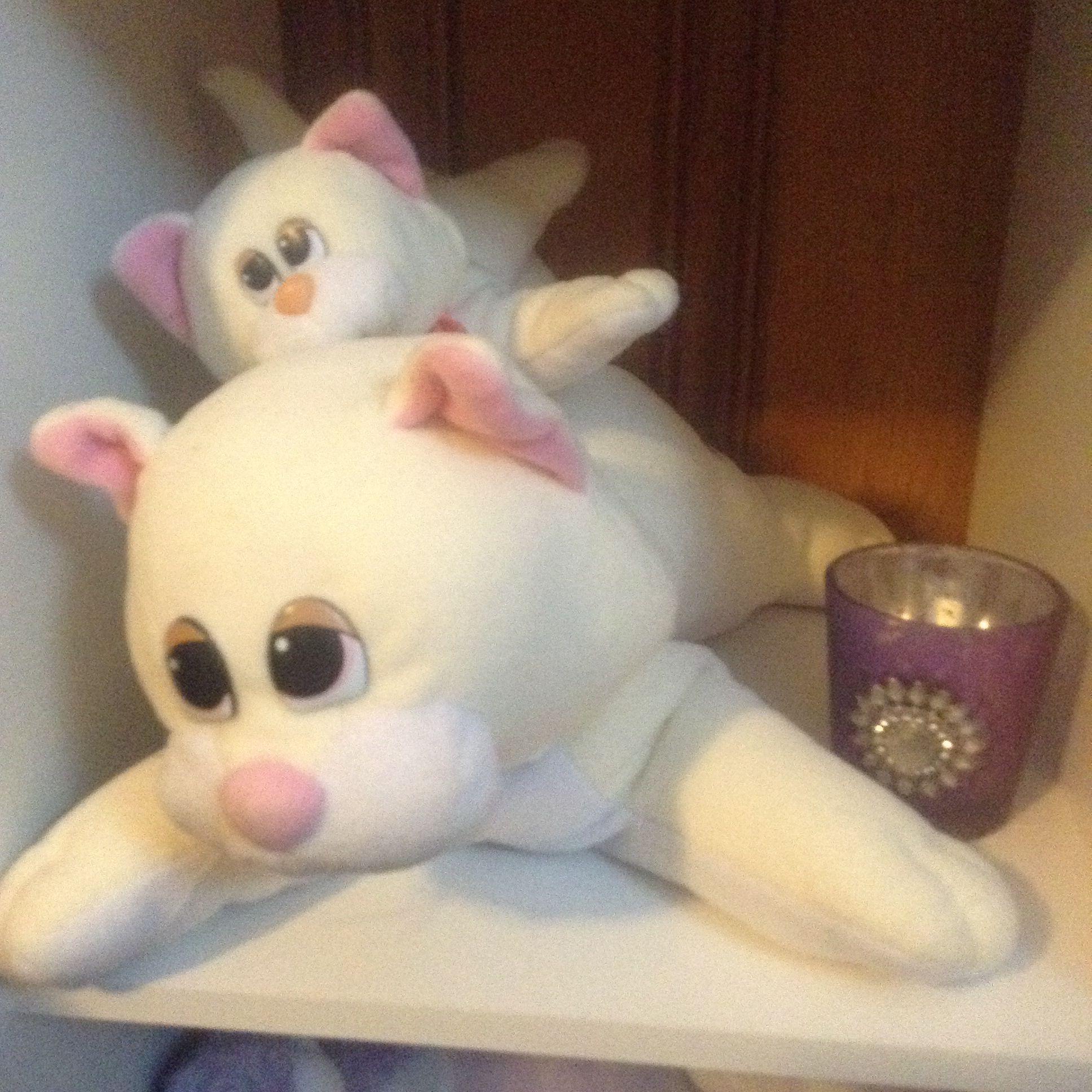 Pound Purries Mama & baby cream and white Cute love, Kittens