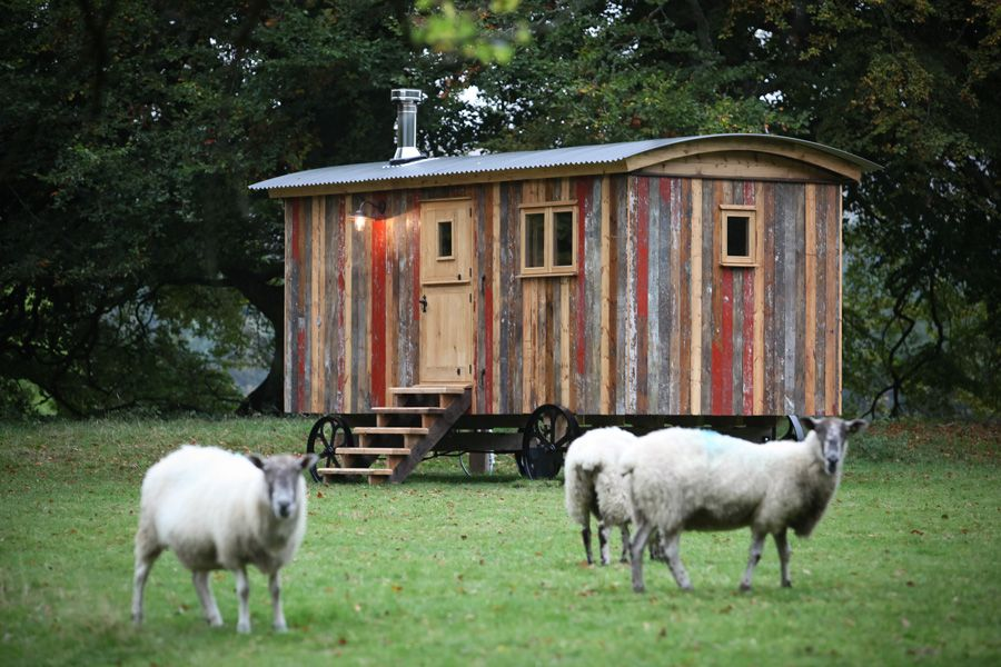 This tiny shepherds hut is a vacation rental in the UK filled