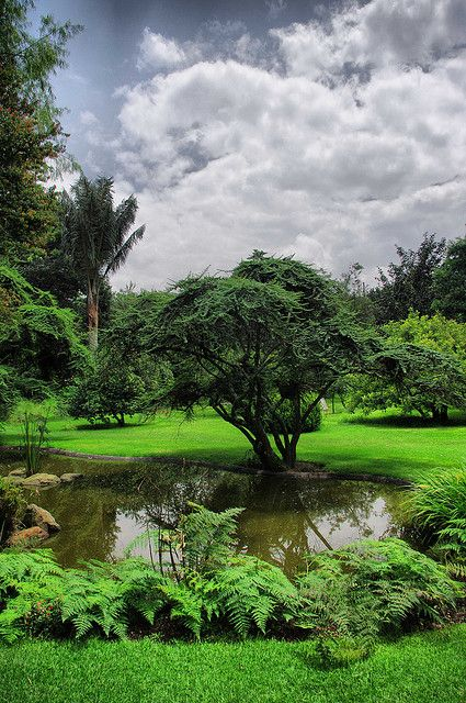 Jardin Botanico Bogota 203 Fhdr Baja Hermosos Paisajes Viaje Colombia Paisajes De Colombia