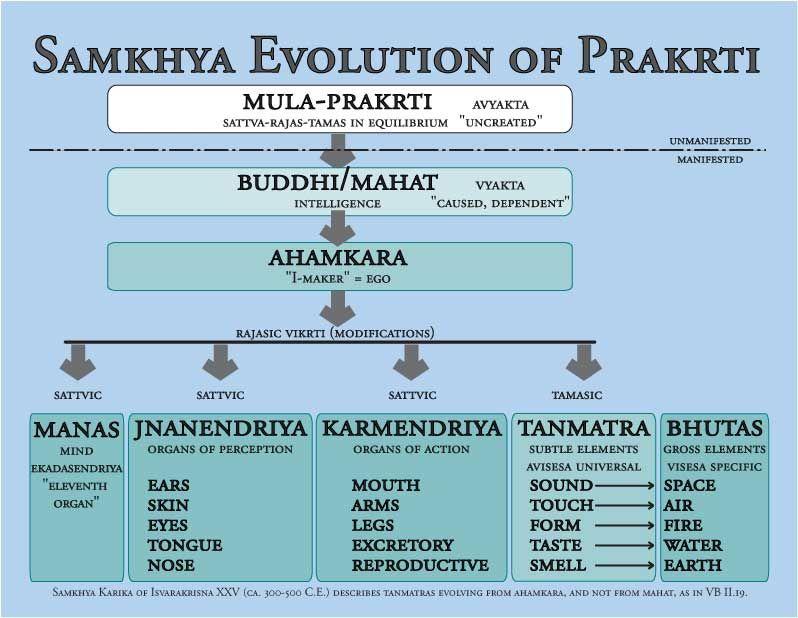 Samkhya Cosmogenychartcolor Lowresconv Jpg 798 618 Yoga Sutras Yoga Philosophy Patanjali Yoga Sutras