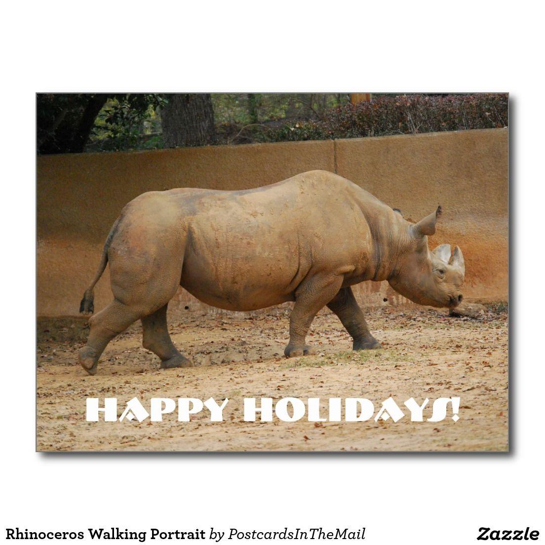 Rhinoceros Walking Portrait Postcard