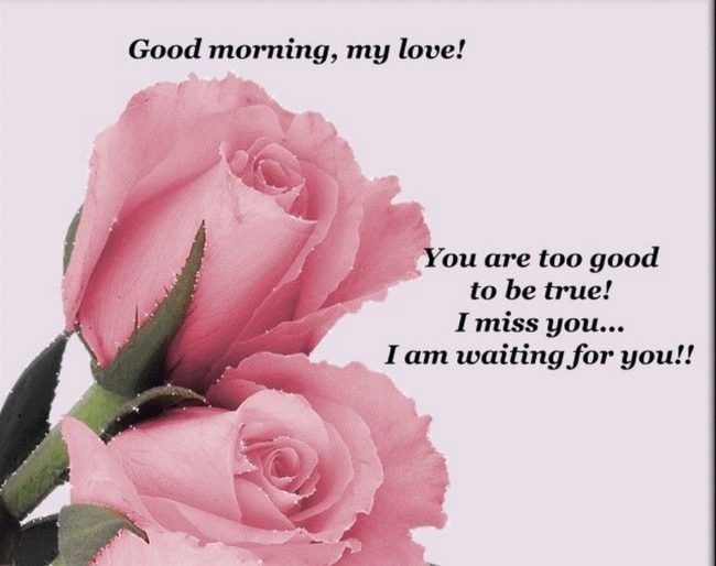 Good Morning Quotes Good Morning My Love I Miss You Quotes Good
