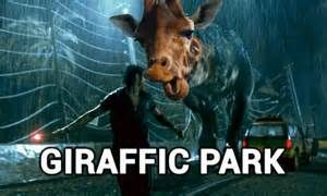 funny memes about giraffes - Yahoo Search Results Yahoo Image Search Results