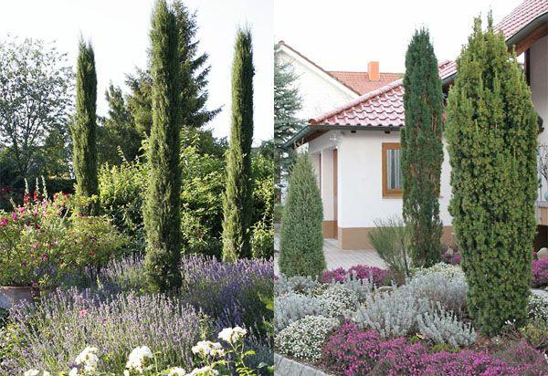 Tauschend Echt Die Doppelganger Mediterraner Pflanzen Mediterraner Garten Garten Pflanzen