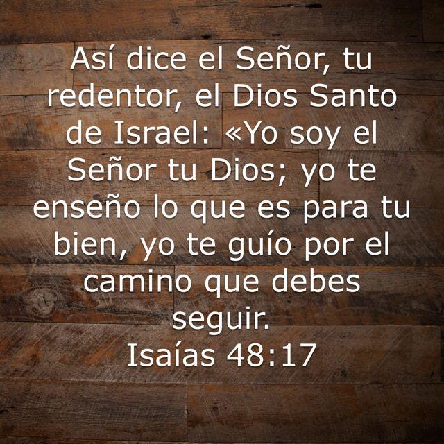 Preciosa Manifestacion Del Amor De Dios Para Sus Hijos Bible
