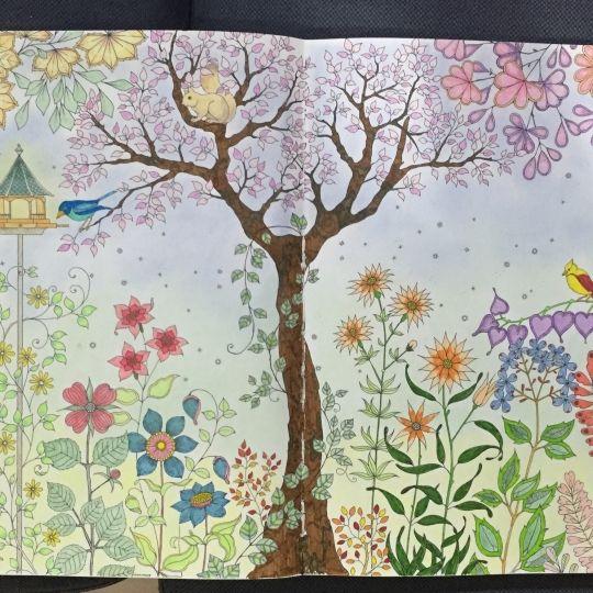 Johanna Basford | Colouring Gallery Derwent pastel, derwent coloured pencils & faber castell connection pen
