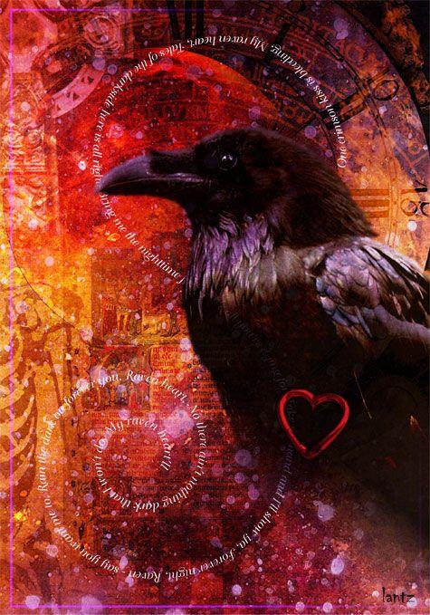 "'Raven Heart' by Timothy Lantz ""Archeon"" via DeviantArt"