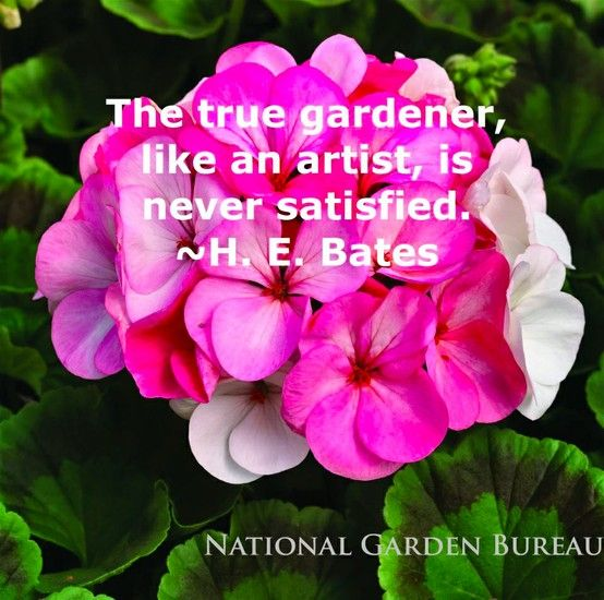 Flower Garden For Dummies: Garden Quotes, Garden