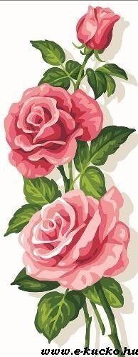 3 Rose La Mercerissima