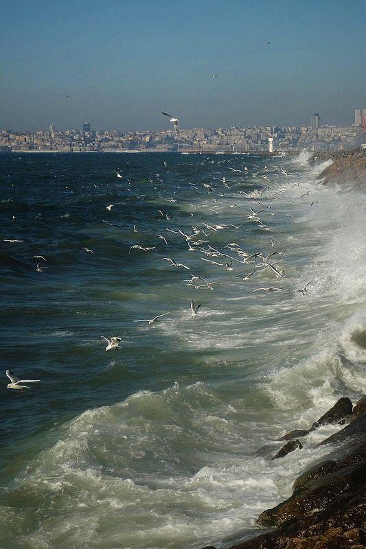 #seaside #sea #coast #Turkey #Istanbul