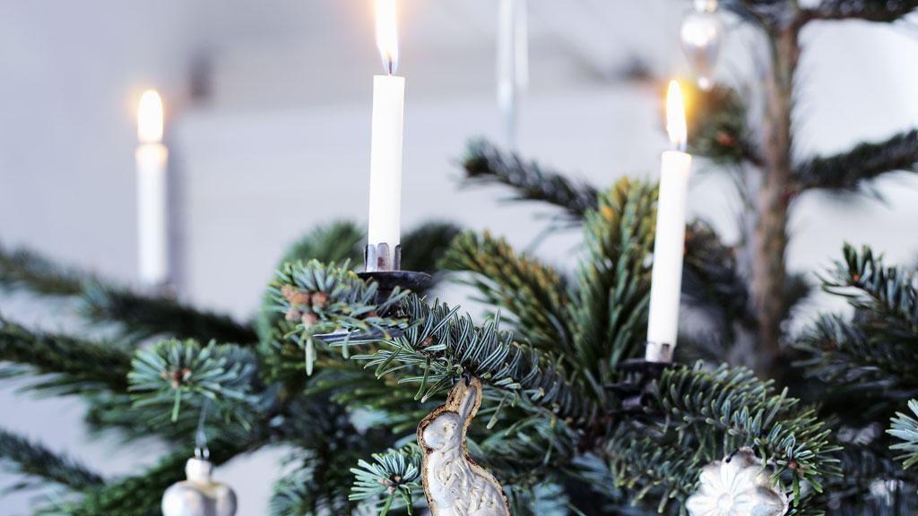 Risultati immagini per dansk juletræ
