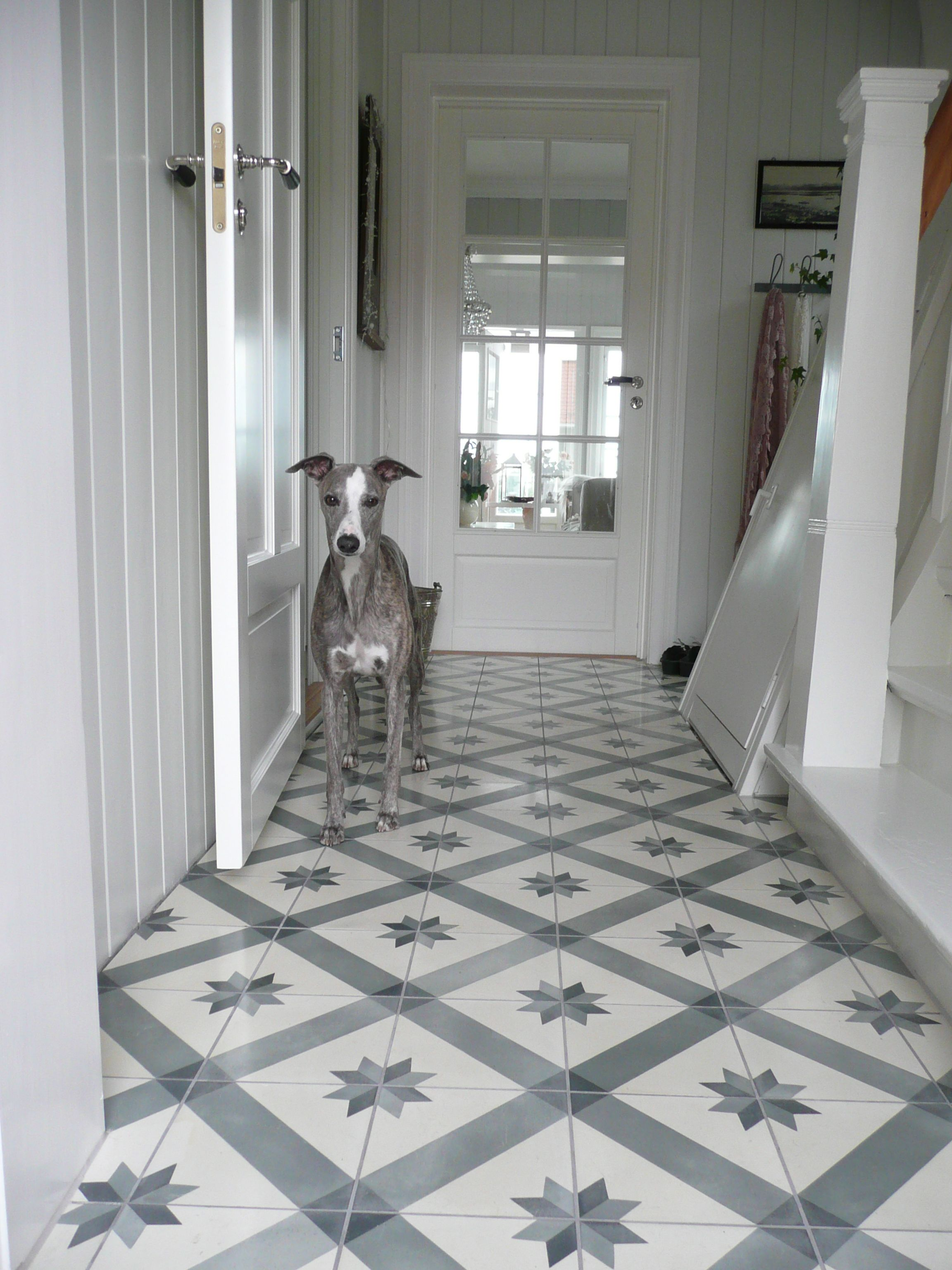 For my kitchen liten norsk hund bucket list of wishes beautiful tiled floor in entry and a pretty dog dailygadgetfo Images