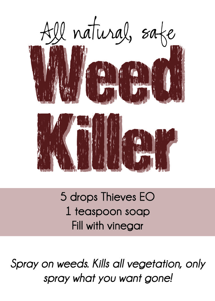 Spraying weeds in flower beds - Diy All Natural Safe Thieves Weed Killer Printable
