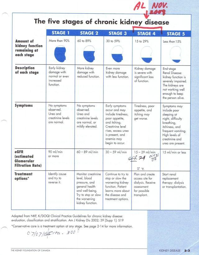 5 Stages Of Kidney Disease Kidney Disease Stages Kidney Disease Chronic Kidney Disease Diet