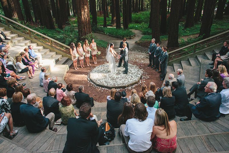 Love Story At The UC Botanical Garden In Berkeley California. Your Cal  Wedding Could Be