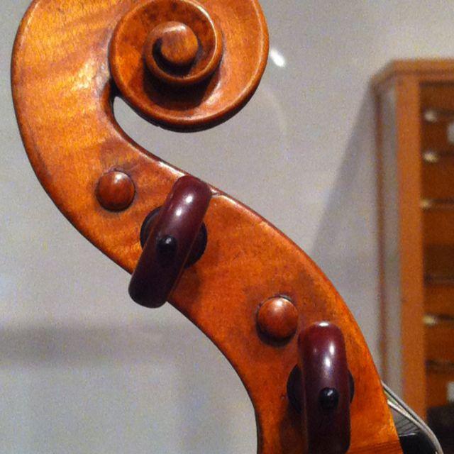 Scroll, N. Amati violin, 1628