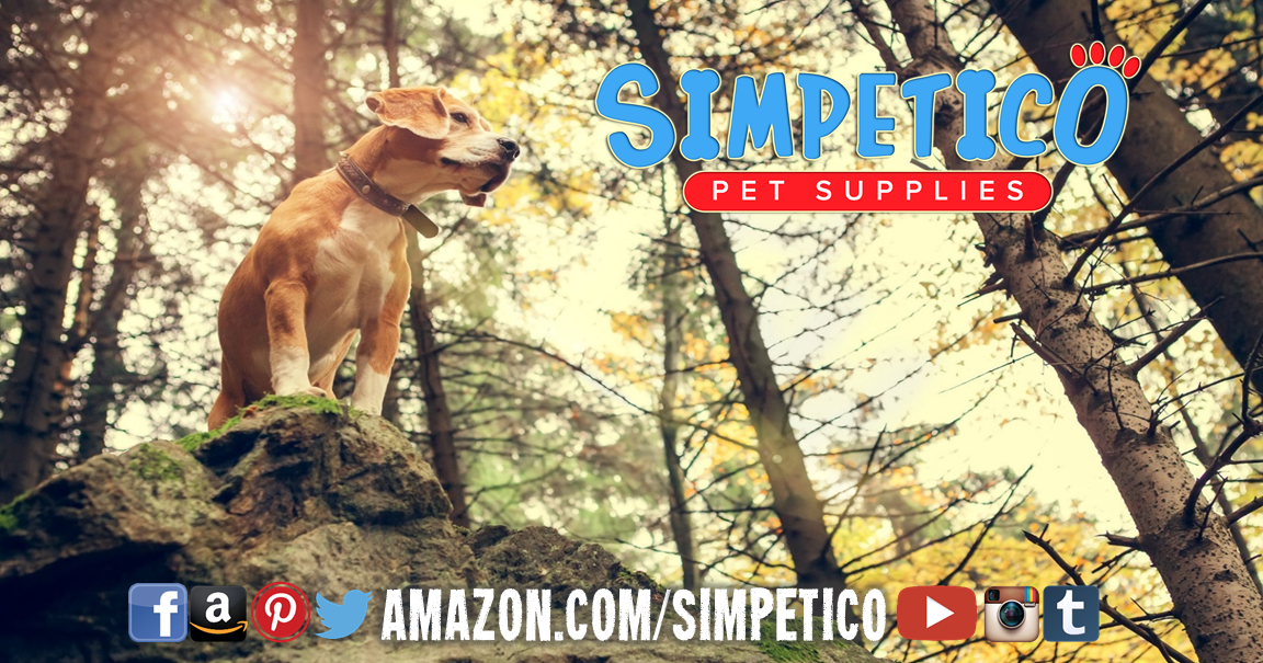 Use Code Sim20off For 20 Off Any Product Click The Image To Shop Simpetico On Amazon Now Web Store Pets Pet Supplies