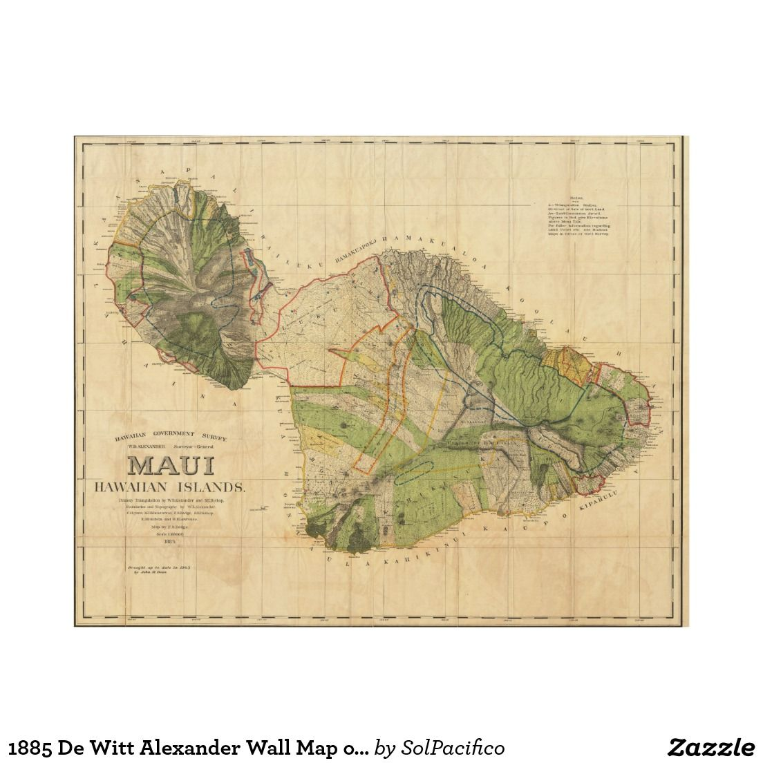1885 De Witt Alexander Wall Map of Maui, Hawaii Wood Wall Art ...