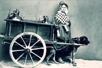 Build A Dog Pulling Cart