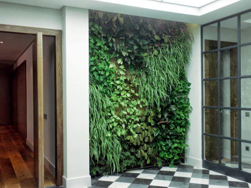 Dise o dise o jard n jardiner a jard n vertical proyecto for Jardin vertical interior