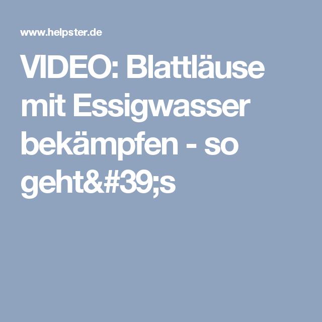 1000+ Ideas About Hausmittel Gegen Blattläuse On Pinterest ... Tipps Pflanzenpflege Hausmittel