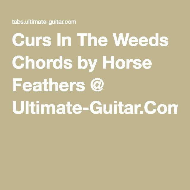Horse Feathers Curs In The Weeds Chords With Images