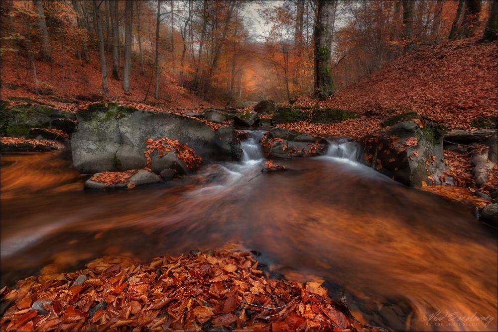 Осень в Закарпатье 2019 г.   Phototravel.pro
